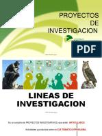 3.- Lineas de Investigacion
