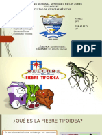 FIEBRE-TIFOIDEA.N COMPLETO.pptx