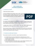 Actividad Colaborativa(2).pdf