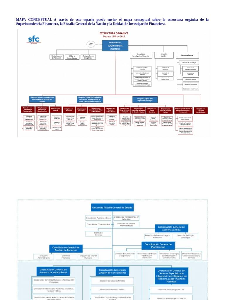 Mapa Conceptual Estructuras Organicas