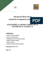 Ingeniería, Medio Ambiente y Sociedad. Agenda 21