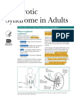 Nephrotic Syndrome Adults 508