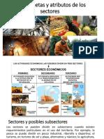 Presentación Atributos Sectores