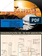 PROCESO DE DESHIDRATACION.pptx