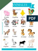 Animales Domestico
