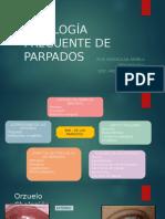 Patología Frecuente de Parpados