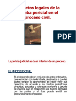 Aspectos Legales Pericial Proceso Civil-convertido
