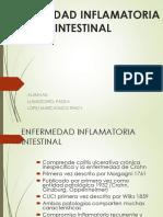 Enfermedad Intestinal Inflamatoria