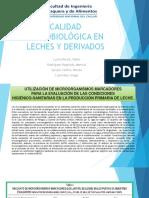 m.o Leches y Derivados