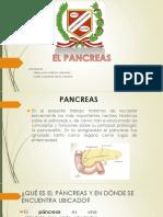 El Pancreas