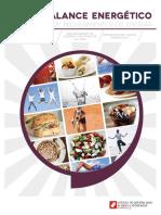 Balance Energético y Cálculo de Requerimientos de Energía, 2013