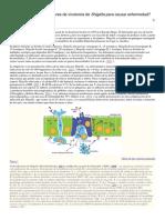 Cómo funcionan los factores de virulencia de.docx