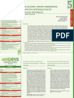 Revista Ambiens