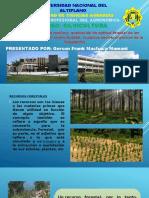 Diapositivas de Viveros