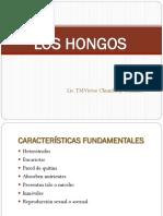 02 Los Hongos
