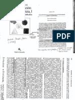 Merlin C.Wittrock.pdf