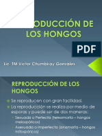 04 Reproducción de Los Hongos