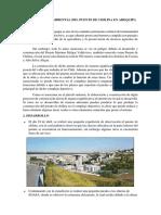351768250-Impacto-Ambiental-Del-Puente-de-Chilina.docx