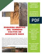 Esquema Grafico Del Terreno Cultivo de Aguacate Hass