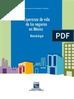 2015- Esperanza de Vida PYMES Mexico