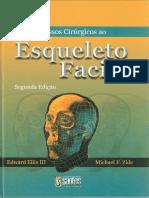 Acessos Cirúrgicos Ao Esqueleto Facial - 2ª Edição - Ellis Zyde