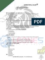 MicroAnatomia CUCS_252c Andrea_252c by Leones Por La SALUD (1) - copia.pdf