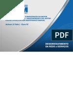 Acteon - Euro IV (4 Válvulas)_Manual de Operação e Manutenção Do Motor_81