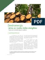 Dendroenergía Como Un Nuevo Vector Energético