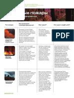 Типы природных пожаров и мифы с ними связанные