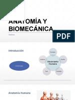 U1 ANATOMIA Y BIOMECÁNICA.pptx