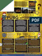 Nos Pubg Guide