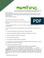 Adriana Guaranda Los-mamiferos (2)