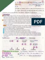 Caso Nardelli P-2º Parcial Sucesiones (Rollieri)