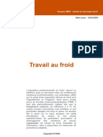 TRAVAILAUFROID.pdf