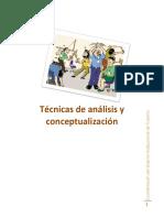 Tecnicas de analisis y conceptualizacion