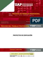 5. PROCESO DE TRABAJO PROFESIONAL..ppt