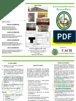 Triptico Clinica