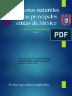Recursos Naturales en Las Principales Etnias de México Presentation