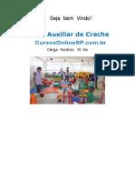 Curso Auxiliar de Creche Sp 07863