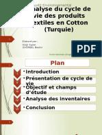 Audit-Env.pptx