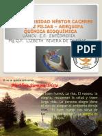 CLASE 3 -2019 -I Materia, Sus Estados