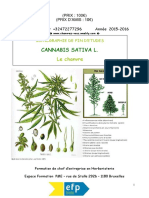 Monographie Chanvre - Cannabis (26-05-19) by G Coutellier