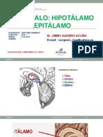DIENCEFALO- HIPO-EPITALAMO - 19.pptx
