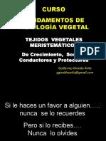 2. Fisiologia_Los Tejidos Vegetales - Meristemos - Formacion y Funciones - Abril 2019 A