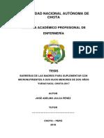 TESIS 2019 ADELMO.docx