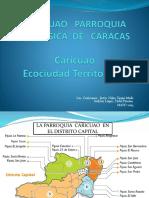 Presentacion de Los Caricuaos, nelson lopez, jesus niño. fidel pirona