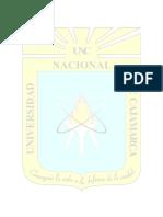 UNIVERSIDAD NACIONAL DE  CAJAMARCA TESIS.docx