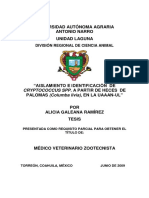 """AISLAMIENTO E IDENTIFICACIÓN DE CRYPTOCOCCUS SPP. A PARTIR DE HECES DE PALOMAS (Columba livia), EN LA UAAAN-UL"""