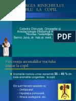 Rinichiul-dublu-la-copil1 (1).pdf