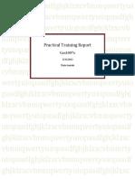 2010+Prac+Report.pdf